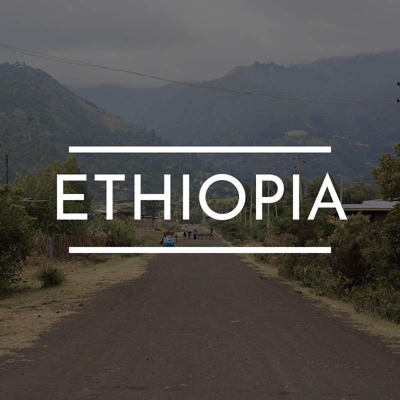 """""""ETHIOPIA"""" is written on top of an image of a dirt road in rural Yetreban Ethiopia."""