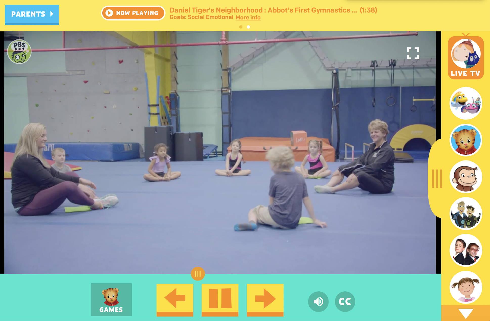 Gymnastic Classes