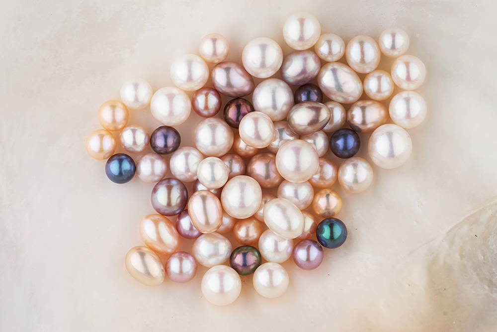 Freshwater Pearls in Shell