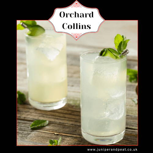 How to make an Orchard Collins  cocktail
