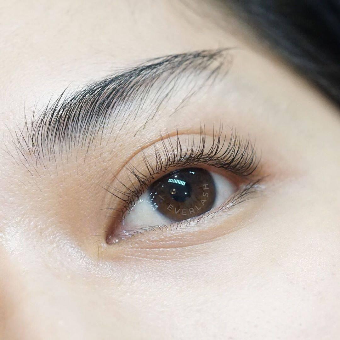 Eyelash Natural dari Everlash