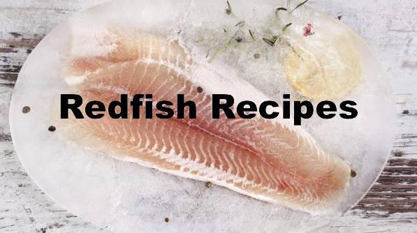 Redfish Recipes