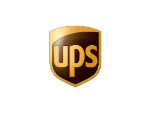 UPS Delivery Box