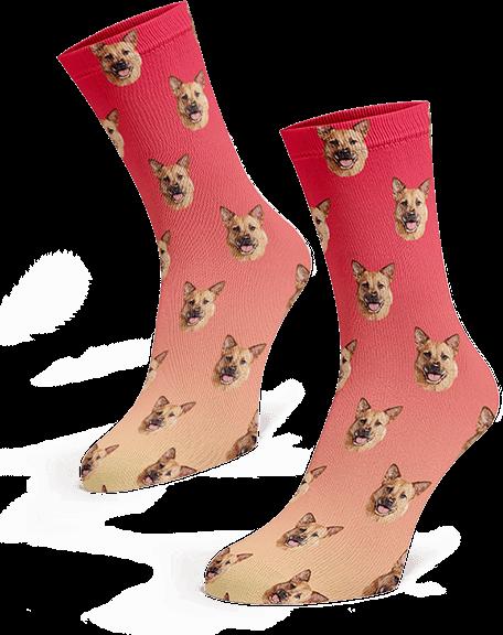 Custom pup socks | Red pink gradient
