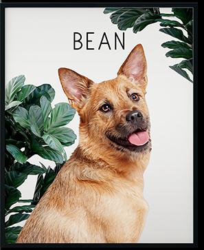 custom modern dog art on framed print