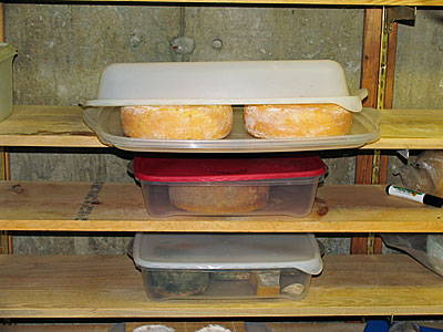 How to Make a Cheese Cave | How to Make Cheese | CheeseMaking com