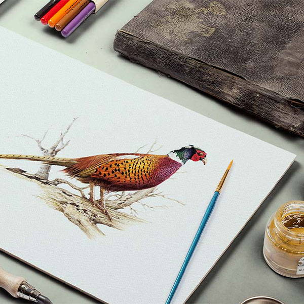 Countryman John - Pheasants Art Gallery
