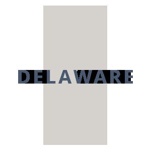 Delaware Silhouette