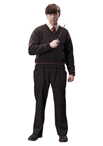 Neville Longbottoms Wand