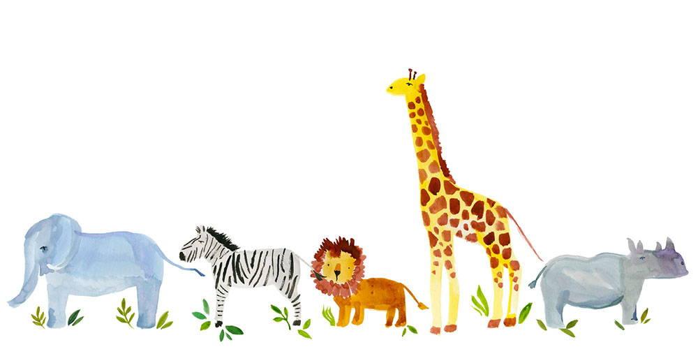 animal theme designs