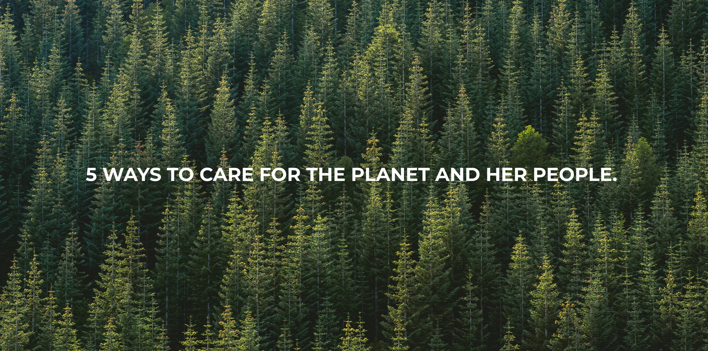 source ways to care for the planet and her people