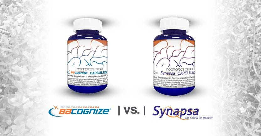 Bacopa monnieri: Bacognize vs. Synapsa