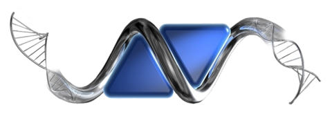 Naidu Group logo