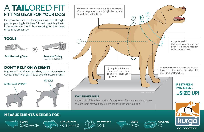 dog-measurement-17x11-rgb.jpg