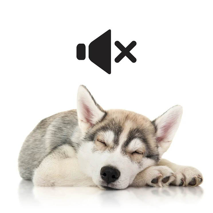 Quiet Pet Nail Grinder, Quiet Dog Nail Grinder