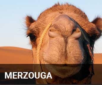 Travelbay Morocco Tailor Made Tours - Merzouga