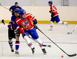 Dalles clipsables en polypropylène pour Hockey