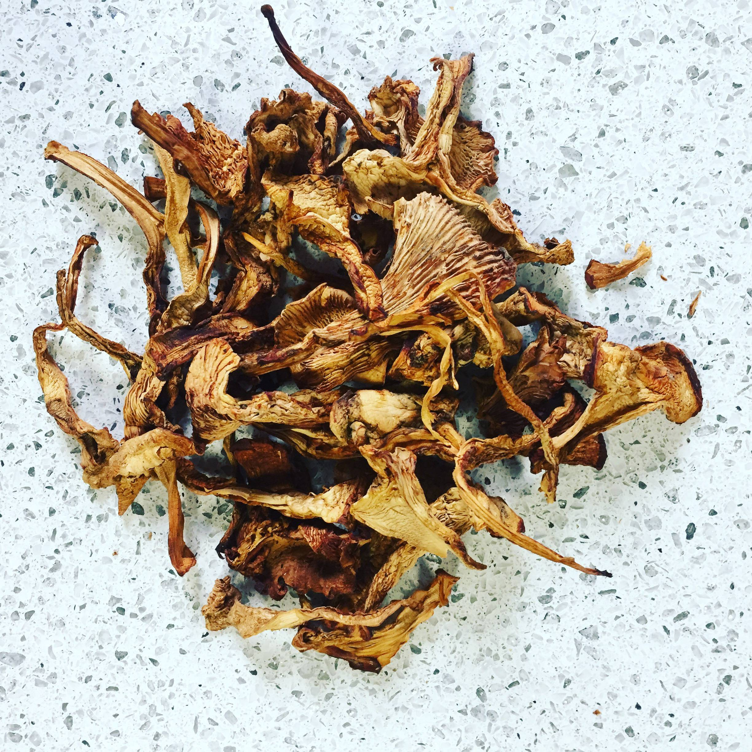A cluster of dried Chanterelle mushrooms