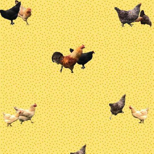Merenda Wallpaper Helen's Yard Wallpaper