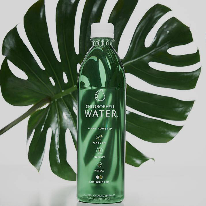 chlorophyll water bottle in front of plant