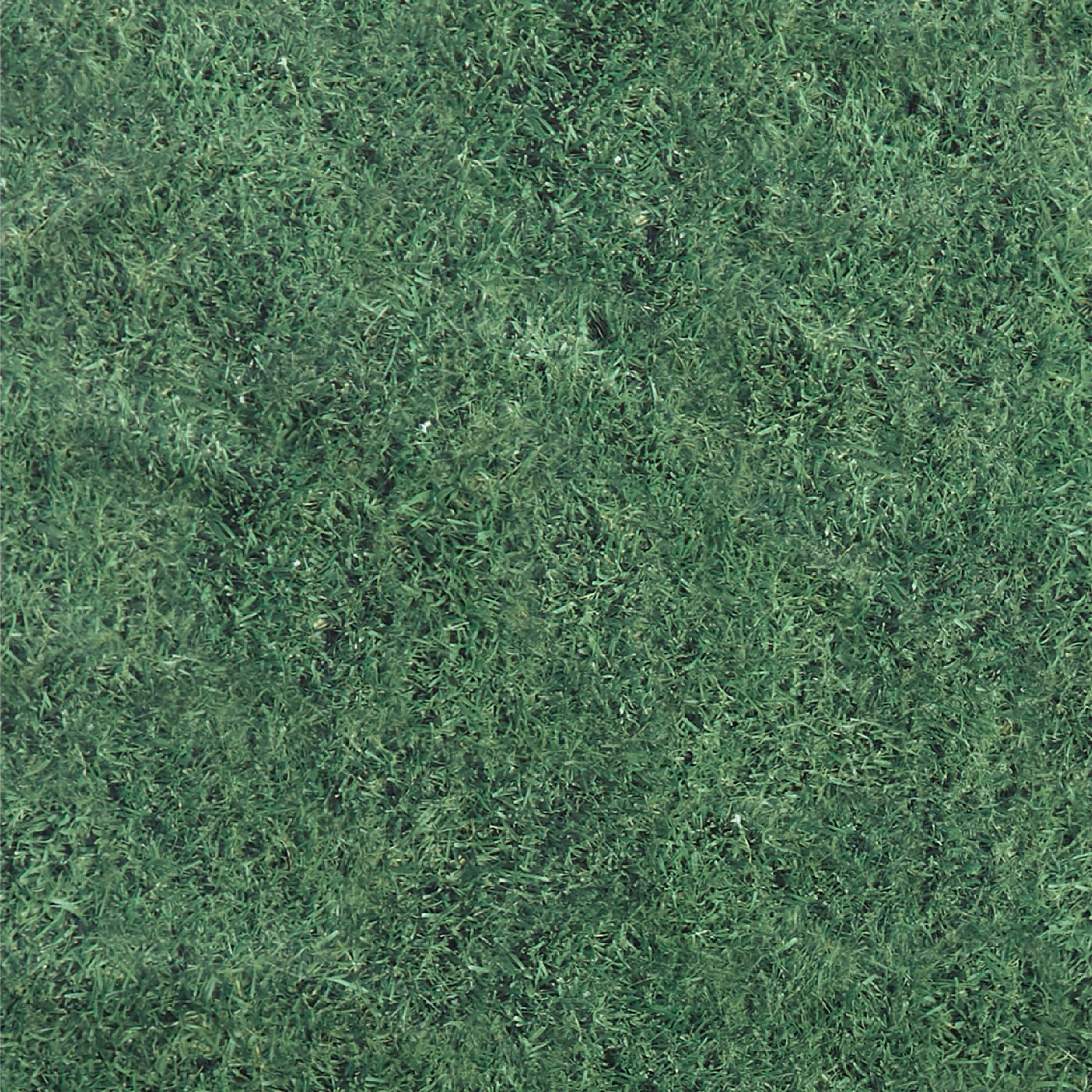 Rumpl Stash Mat Lawn