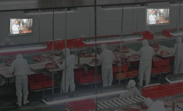 Manufacturing Facility TV and display protection