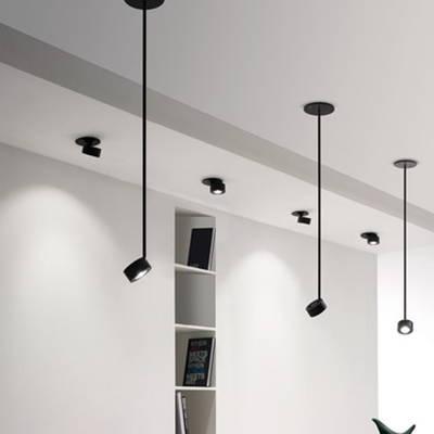 Favilla collection