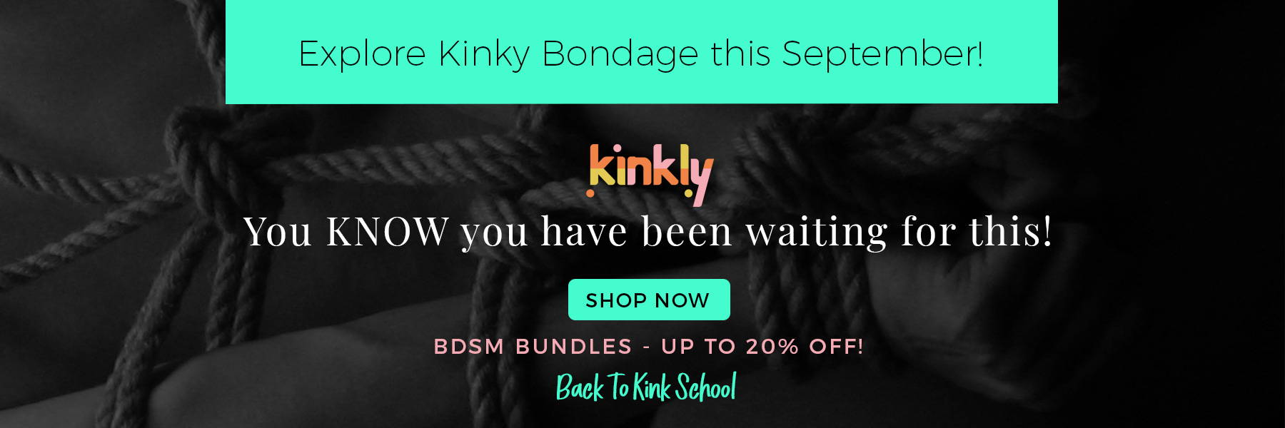 Display image for the BDSM kit sale. Image reads