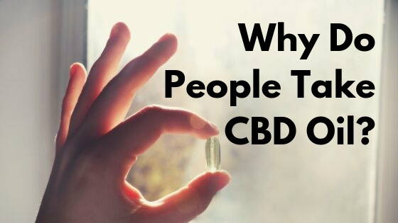 Why Do People Take CBD Oil? | Learn Why From Anavii Market
