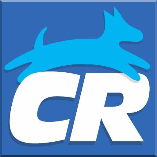 Clean Run Logo