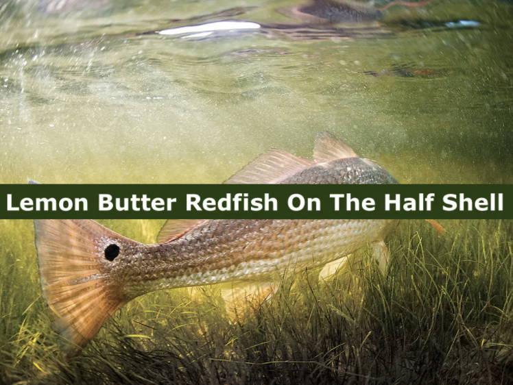 Lemon Butter Redfish on the Half Shell