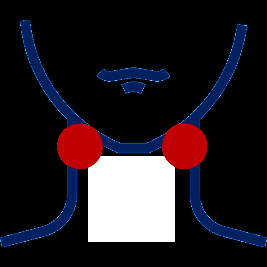 Niaulí anginas
