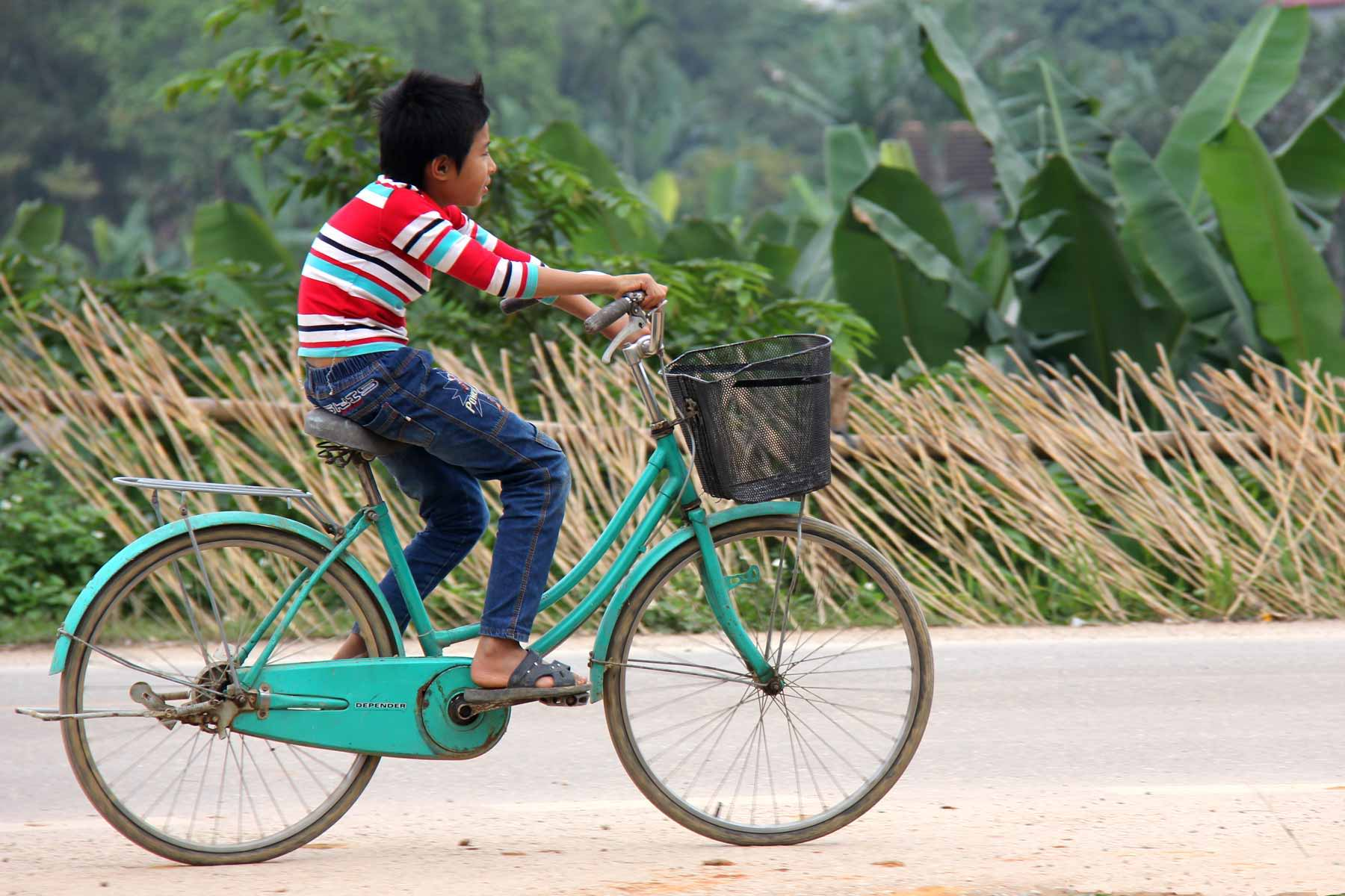 Vietnamese child riding his bike past bamboo stalks