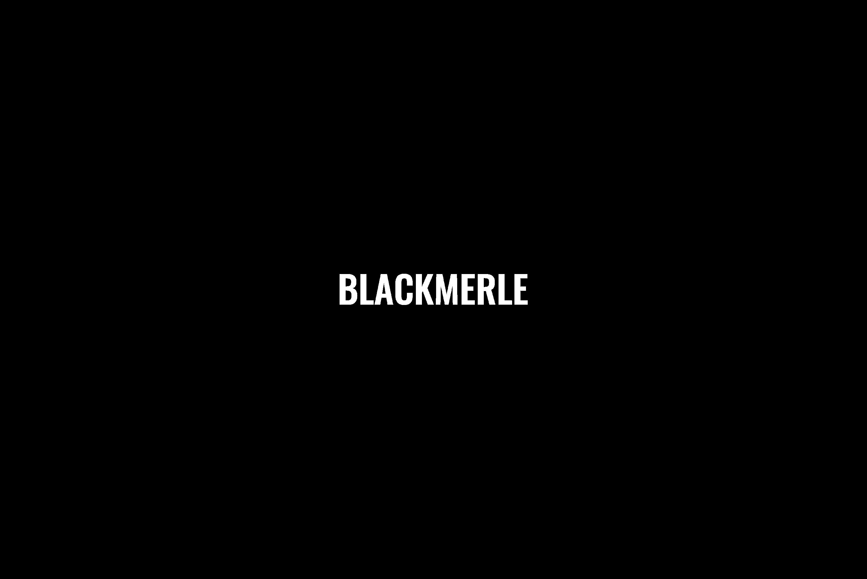 Blackmerle FW18 Hlorenzo