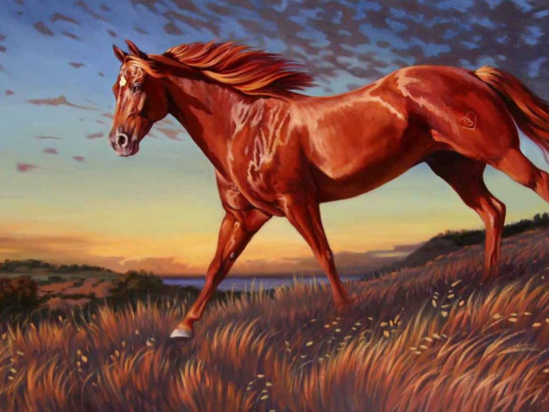 Nancy Davidson. Sorrel Sky Gallery. Santa Fe Art Gallery. Maura Allen. Edward Aldrich. Kevin Red Star. Ray Hare. Durango Art Gallery.
