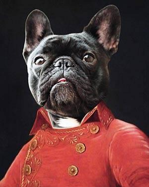 renaissance dog art