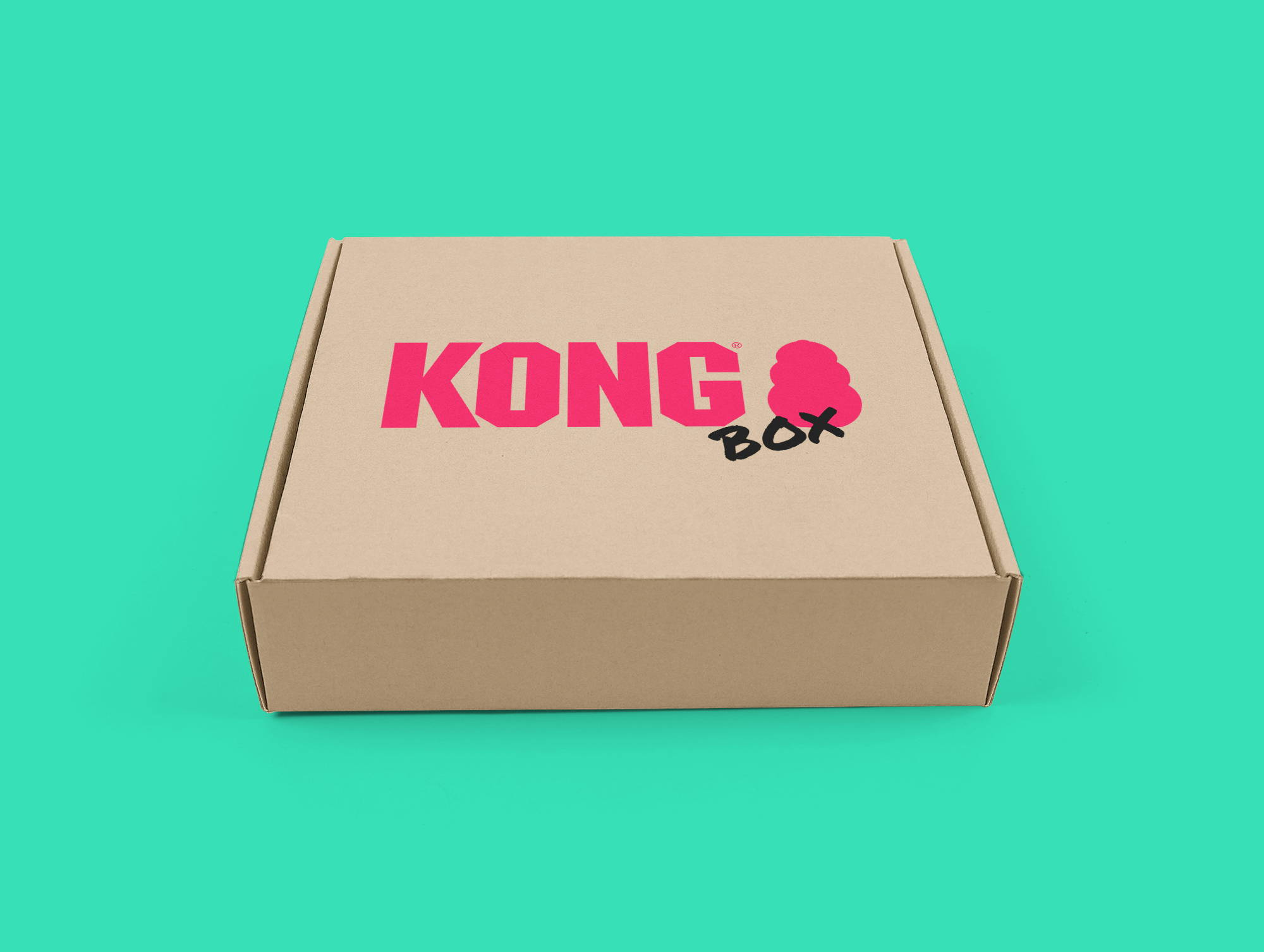 KONG Get Well Soon Box