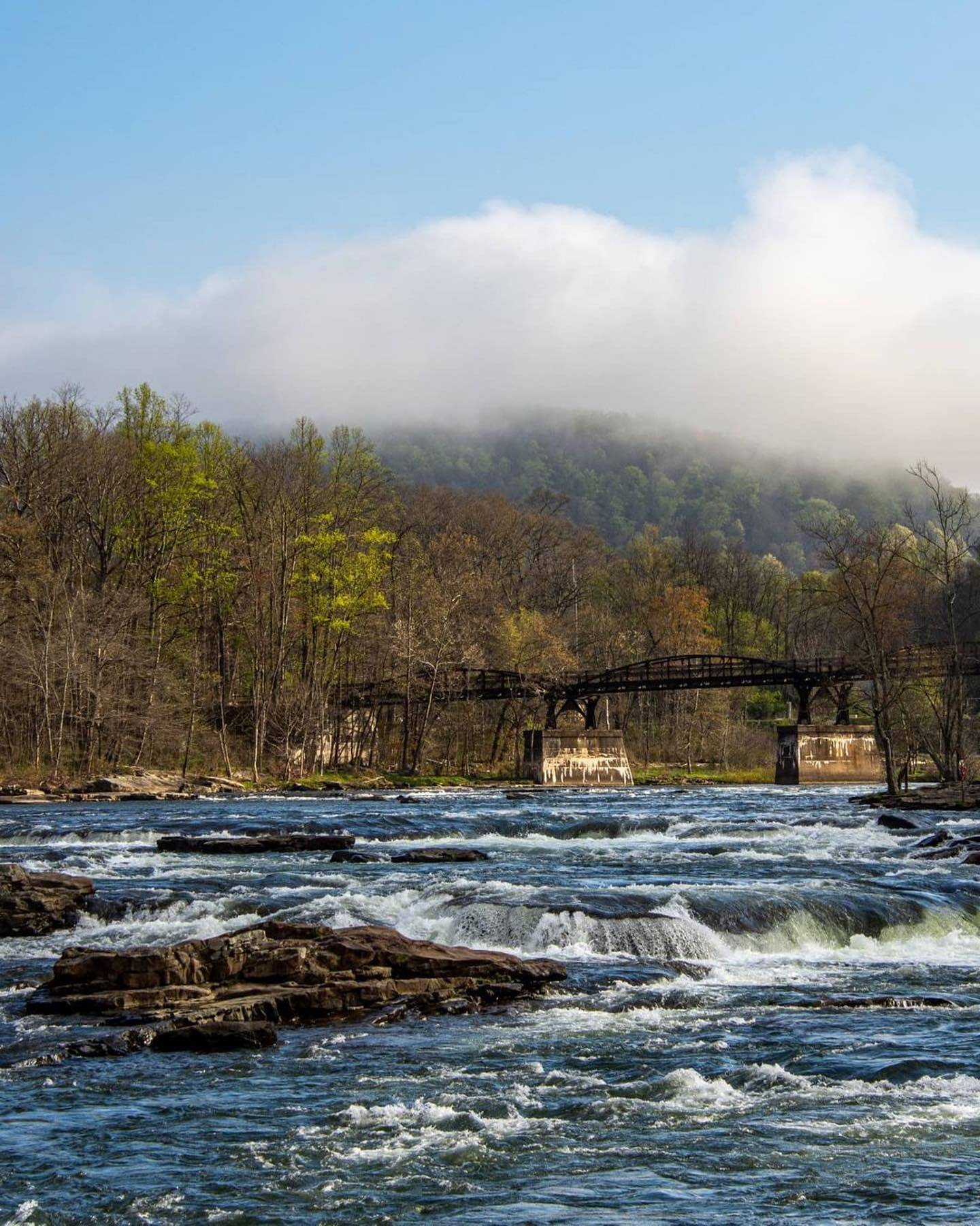The Youghiogheny River along the Ferncliff Trail in Ohiopyle, PA