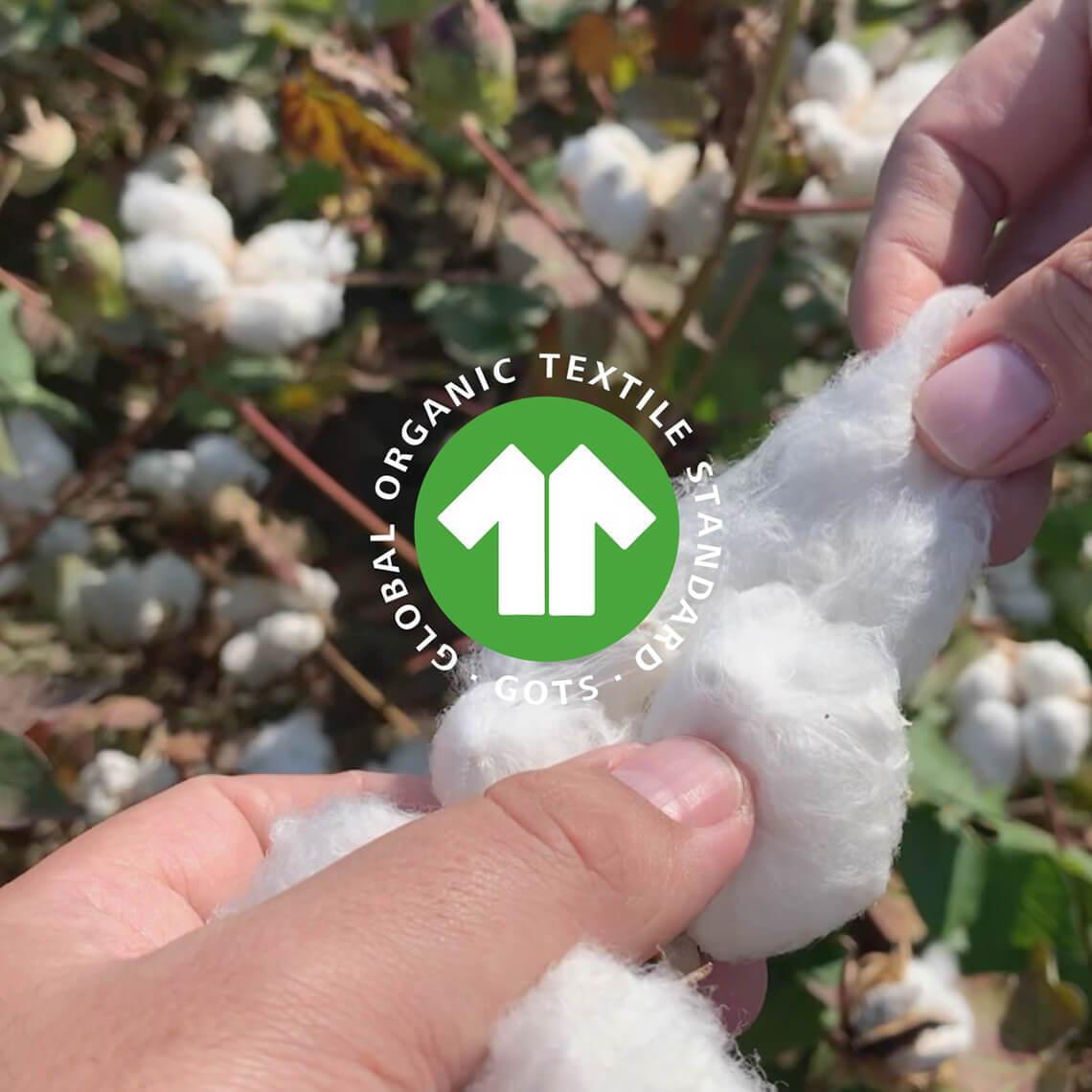 Bio-Baumwolle GOTS-Zertifikat Siegel