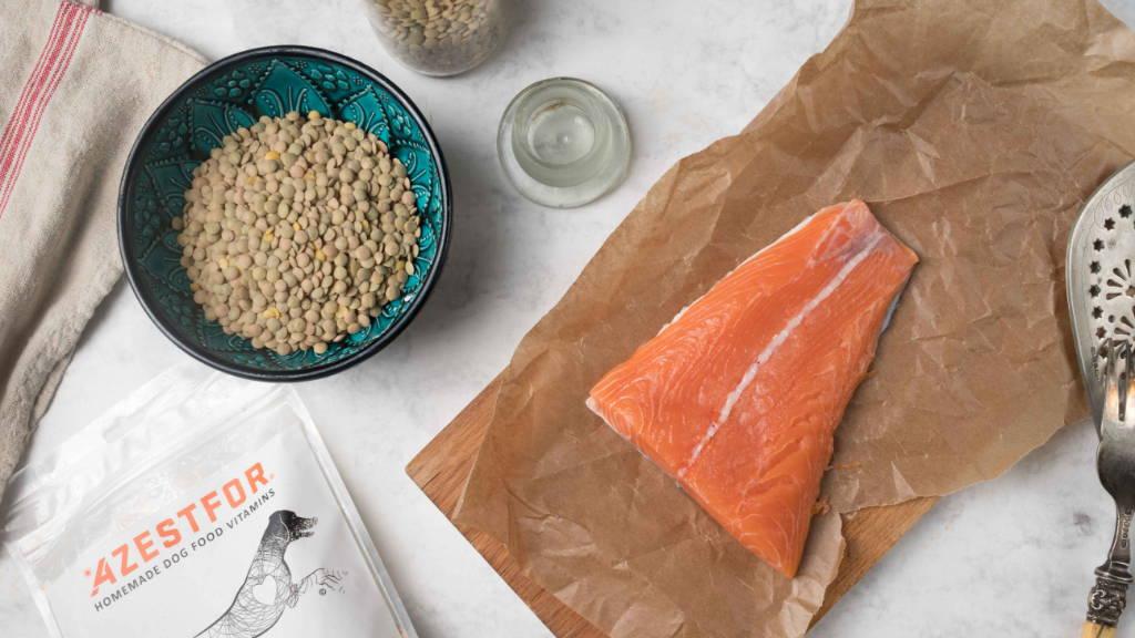 dog food recipes ingredients fish lentils