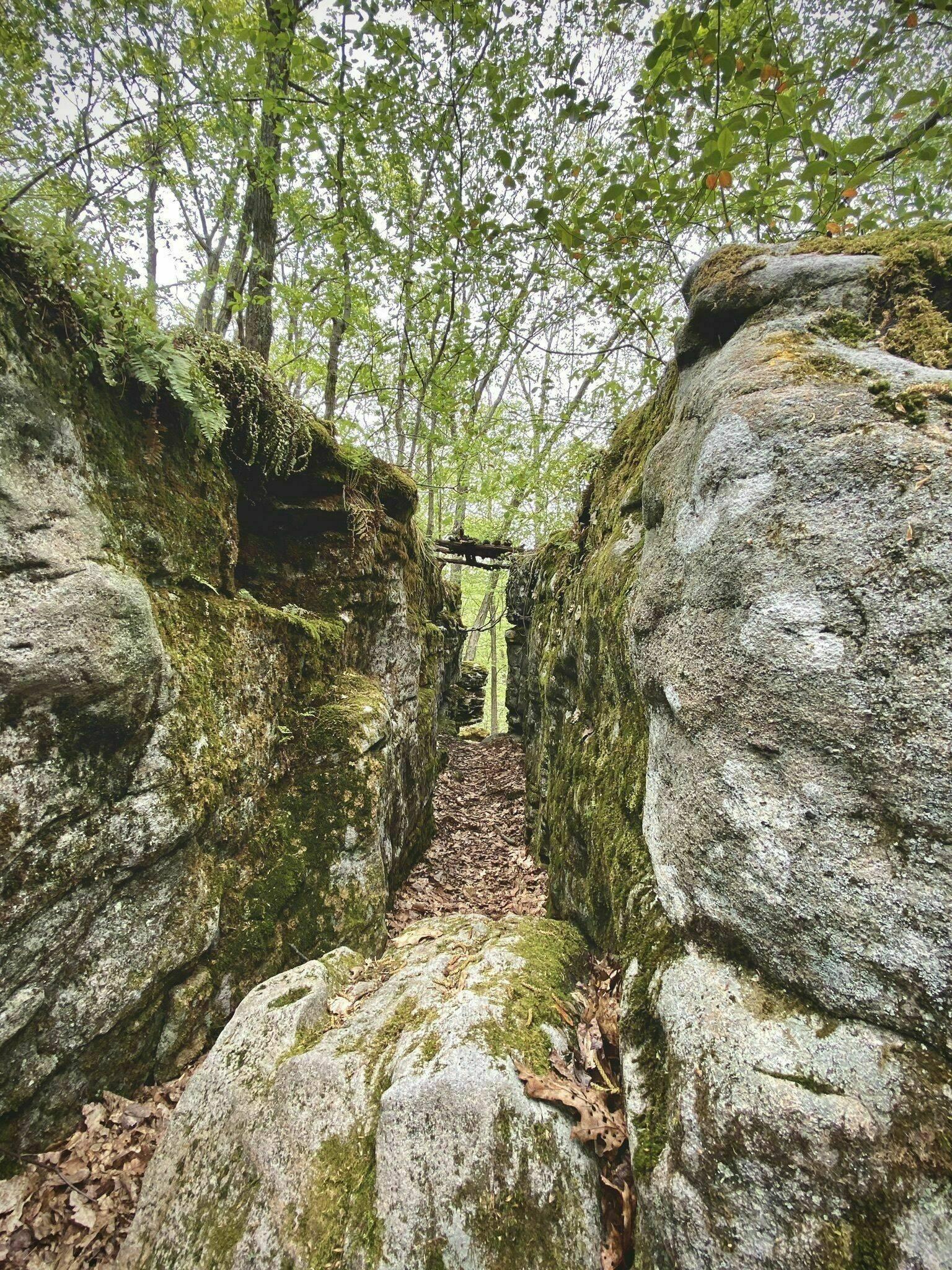 Laurel Highlands Hiking Trail Mile 70 to 0