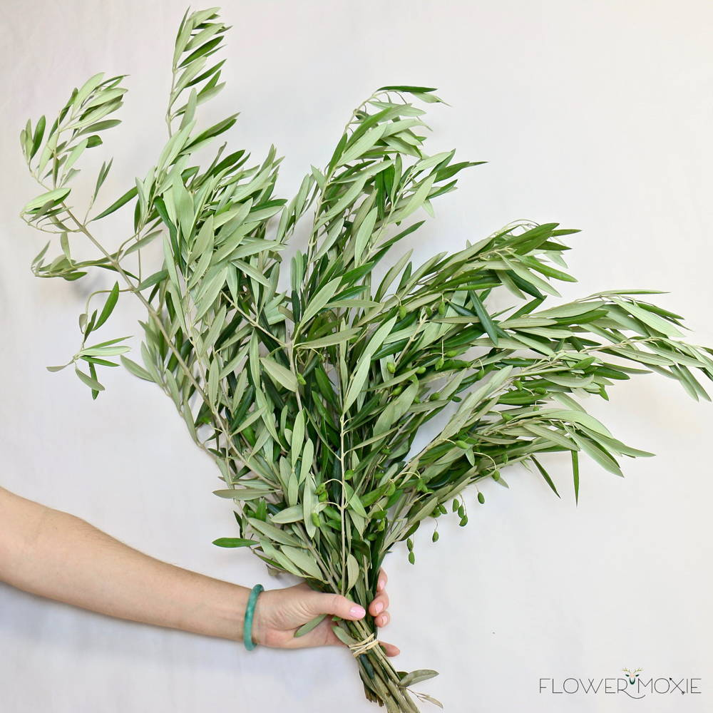 olive branch diy greenery