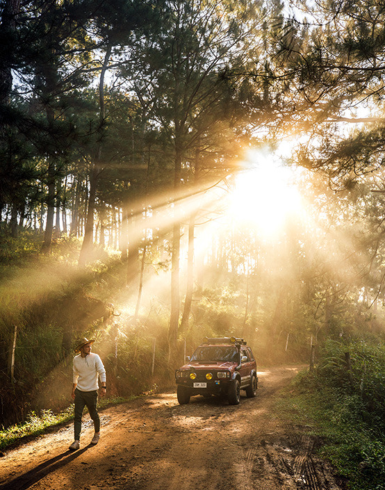 man and jeep in jungle