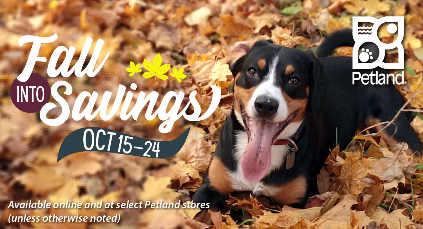 Petland's Fall into Savings Sale is available online and at select Petland stores (unless otherwise noted) from October 15 to 24, 2021