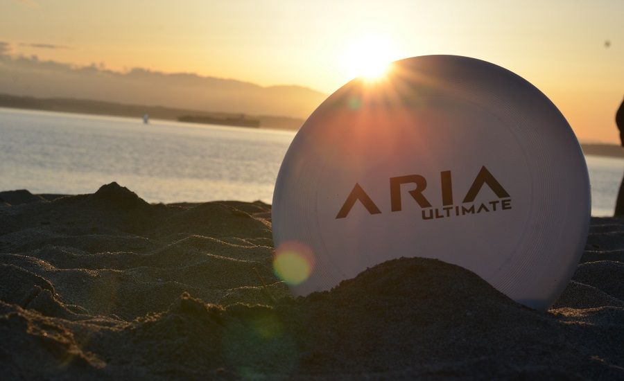 Read more about ARIA Ultimate as a precision disc company ARIA professional official ultimate flying disc for the sport commonly known as 'ultimate frisbee' goty game of the year