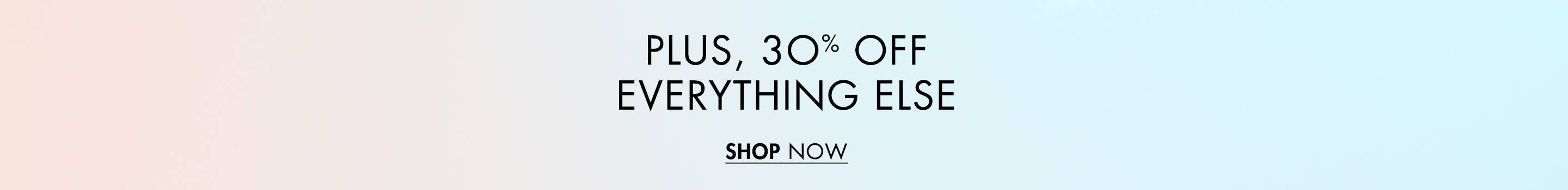Plus 30% Off Everything Else