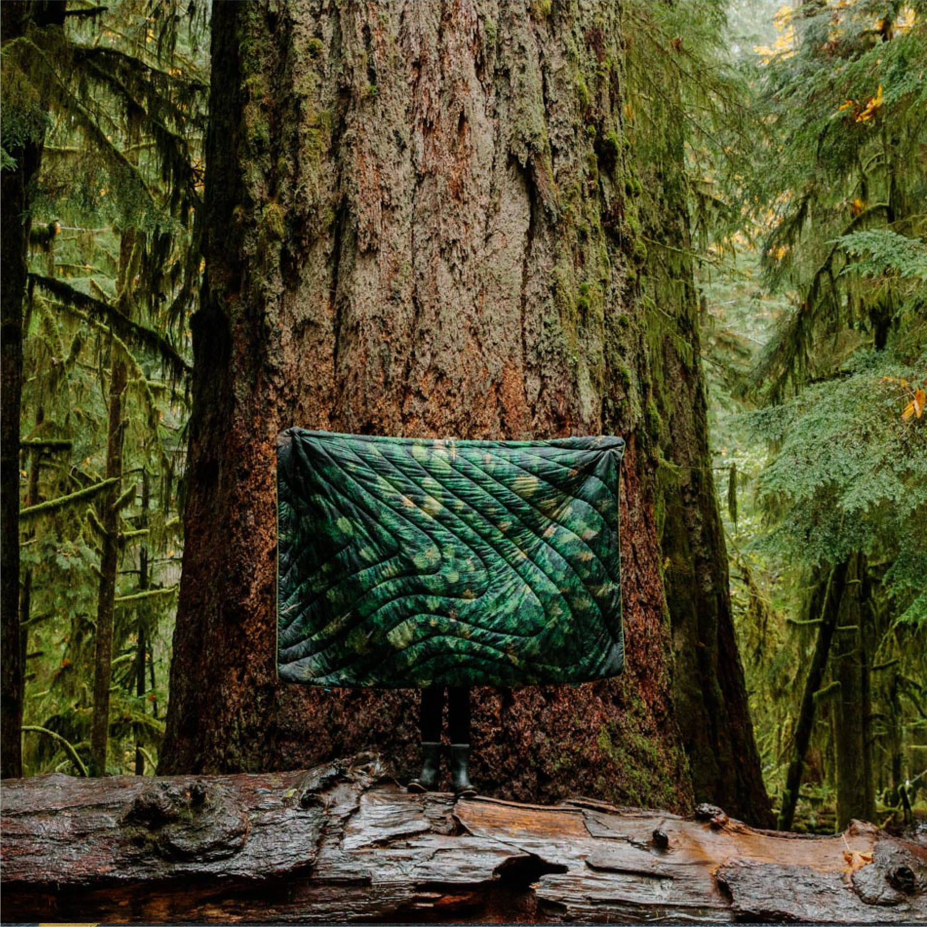 Jeremy Koreski Old Growth Original Puffy Blanket | Rumpl