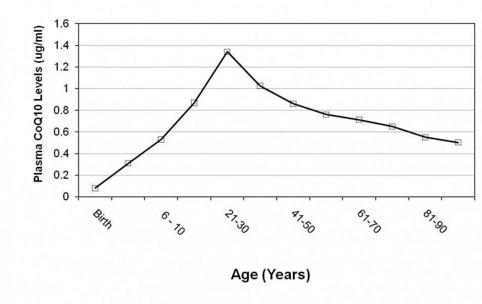 Abbildung der natürlichen Abnahme des Coenzym Q10 levels mit steigendem Alter