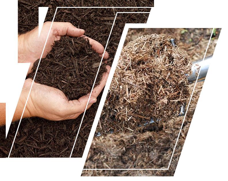 Soil organic fertilizer