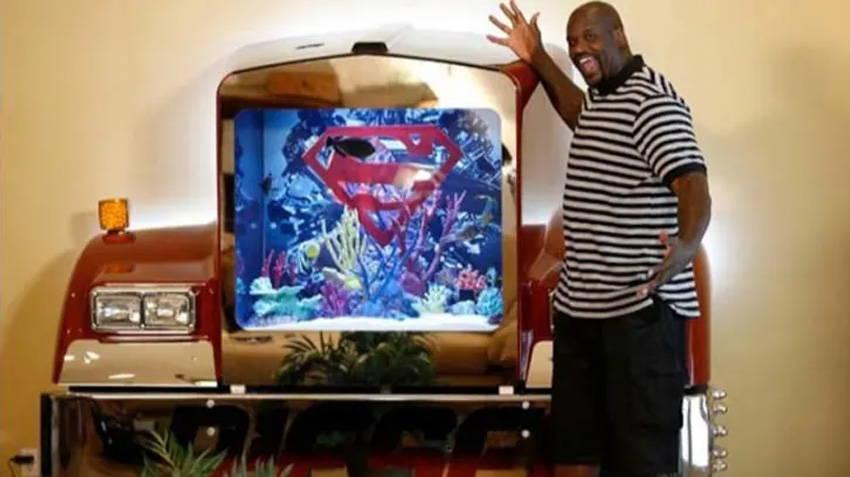 Shaq and Custom Fish Tank